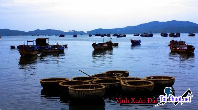 Vịnh Xuân Đài Phú Yên, điểm du lịch lý tưởng vẻ đẹp Vịnh Xuân Đài về đêm