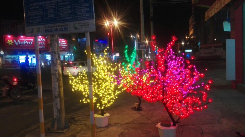 Cây hoa đào, mai, liễu đèn led, thanh lý giá rẻ toàn quốc