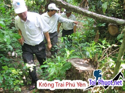 Tham quan khu bảo tồn thiên nhiên Krông Trai